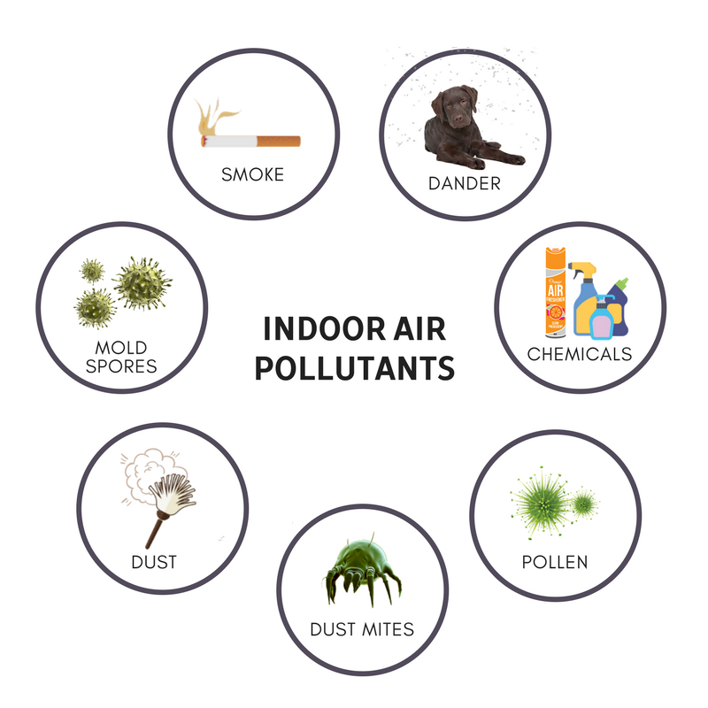What You Don T Know About Your Indoor Air Quality Beyond